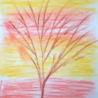 »kahler Baum«, Oktober 2009 | © mh
