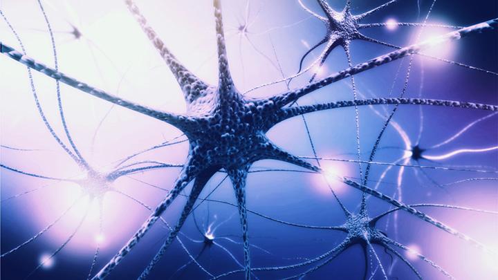 Was bei einem Psychopharmaka-Entzug im Gehirn geschieht?