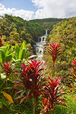 Umauma Wasserfälle, Big Island, Hawaii