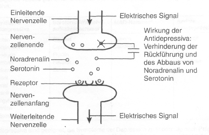 book Untersuchung der Fahrdynamik von Pkw unterschiedlicher Konzeption bis in den Grenzbereich mit Hilfe